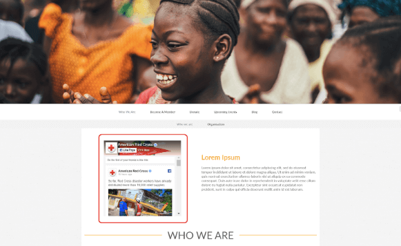 nonprofit-facebook-widget